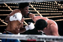 GLORY 43 FIGHT 02 LOGO (4 of 4)